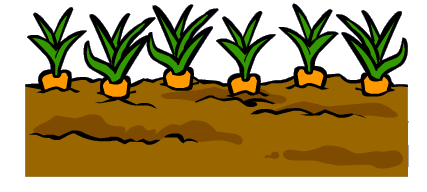 File:Garden 3.PNG