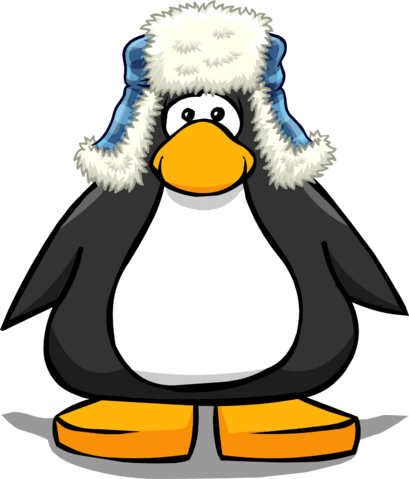 File:Blue Fuzzy Hat 2.png