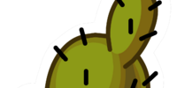 Desert Cactus Pin