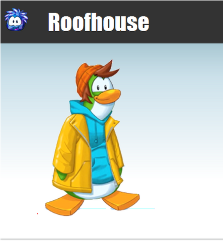 File:Roofhouse ssb4 charbox.png