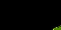 Lime Slip Ons