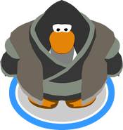 Mountain Robes ingame