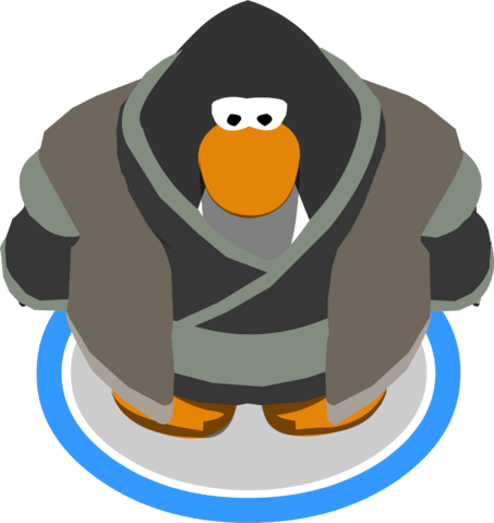 File:Mountain Robes ingame.PNG