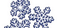 Snowflakes Pin