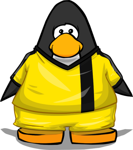 File:Clothing 24128 player card.png