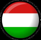 Hungary flag clothing icon ID 531