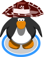MexicanSombrero-1802-InGame
