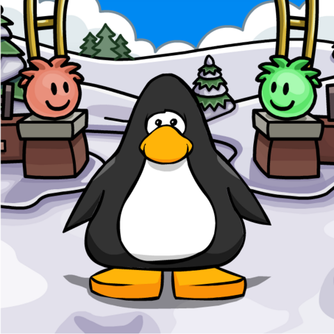 File:Puffle Park Background on Player Card.png
