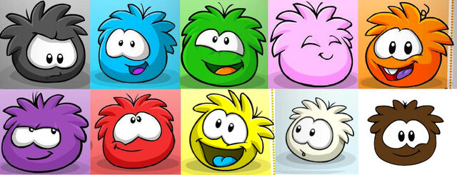 File:Puffle contest!.jpg