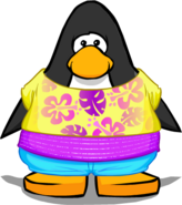 Endless Summer Outfit from a Player Card