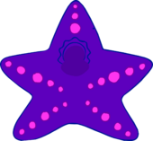Starfish Costume icon