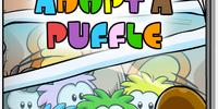 Adopt A Puffle