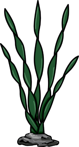 File:Sea Weed.PNG