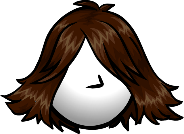 File:The Brunette clothing icon ID 1113.png