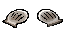 File:Two seashells cove.PNG