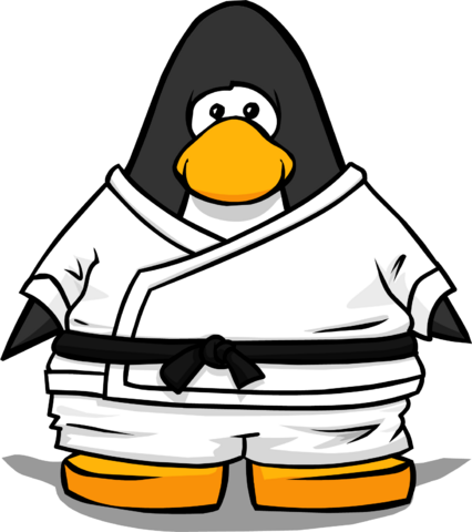 File:White Gi from a Player Card.PNG