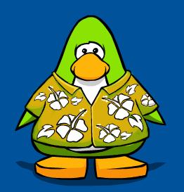 File:Yellow Hawaiian Tshirt playerc.png