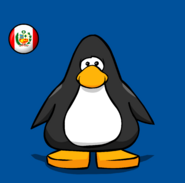 Peru Flag on a Player Card