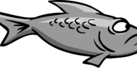 Gray Fish