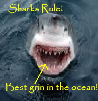 File:Sharksrule!.png