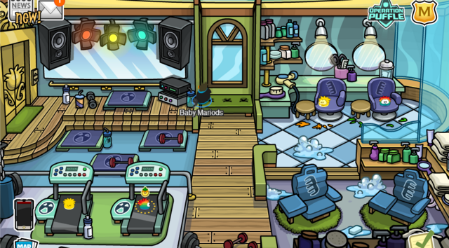 File:Puffle hotel gym.png