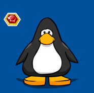 RubyBroochPinPC