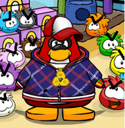 Puffle Rescue!I mean attack!