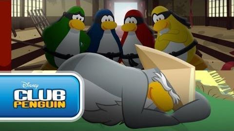Video Club Penguin Shorts Never Wake A Sleeping Sensei