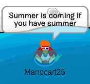 File:SummerMariocart.png