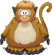 Monkey Costume on a Player Card