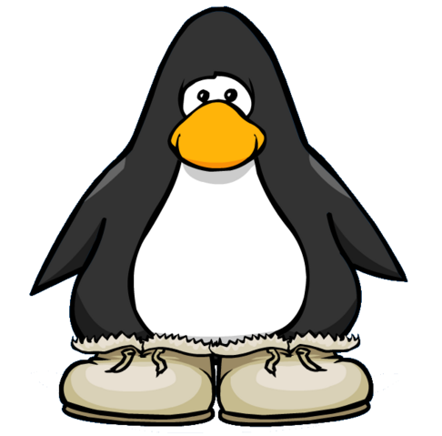File:Winter Boots from a Player Card.PNG