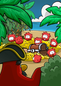 Rockhopper Island Red Puffle Treasure