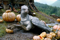 File:Buckbeak Secret Page Award.jpeg