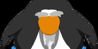 Senseis Beard