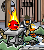 Black puffle sighting 3