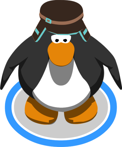 File:Brown Teal Cap in-game.png