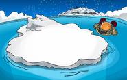 New Year's 2012 Iceberg