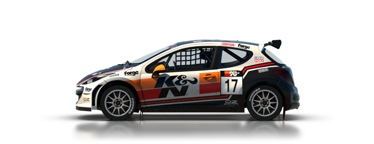 DiRT Rally Peugeot 207 S1600