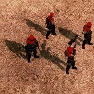 Shadowteam