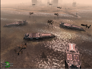 CNCTW Beta Carriers 2