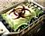 Gen1 Bio Bomb Icons