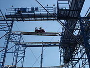 Wild mouse hershey