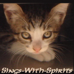 File:Sings With Spirits Deviant ID by Sings With Spirits.jpg