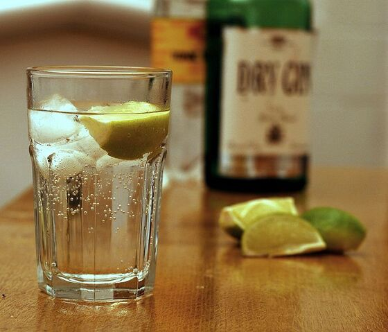 File:700px-Gin and Tonic with ingredients.jpg