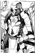 Cc armor