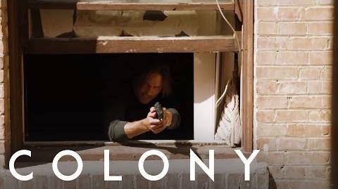 Colony 'Will Chases a Suspect'