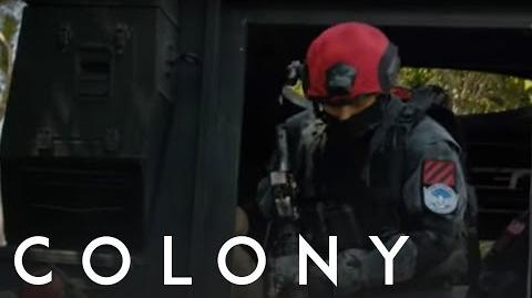 Colony 'Tanks' from Episode 107