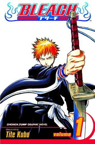 File:Bleach 1.jpg