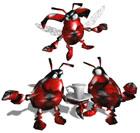 File:Beetles.jpg
