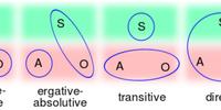 Morphosyntactic alignment